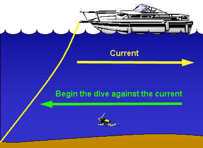 diving in currents