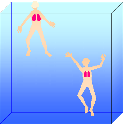 lungs and buoyancy